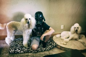The poodles and star wars kids